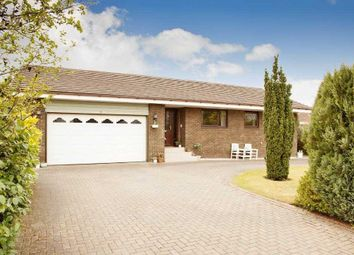 Thumbnail 4 bed bungalow for sale in Murieston Court, Murieston, Livingston