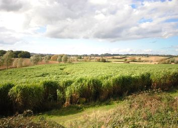 Thumbnail Land for sale in Land At Merry Tom Lane, Brixworth, Northampton, Northamptonshire