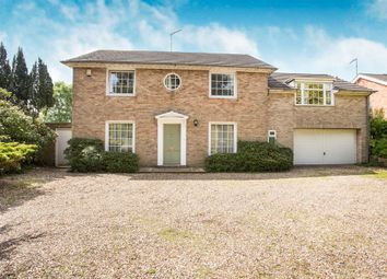 Thumbnail 6 bed detached house for sale in Gayton Road, King's Lynn