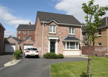 Thumbnail 3 bed detached house to rent in Holstein Crescent, Lisburn