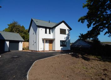 Thumbnail 3 bed detached house for sale in Govers Meadow, Colyton, Devon