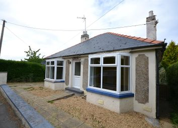 Thumbnail 3 bed detached bungalow for sale in Spring Gardens, St. Dogmaels Road, Cardigan