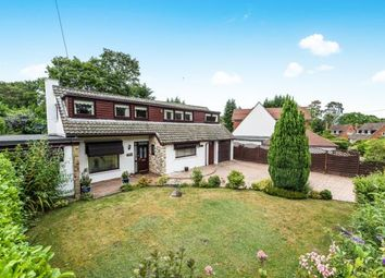 Thumbnail 3 bed detached house for sale in Lightwater, Surrey
