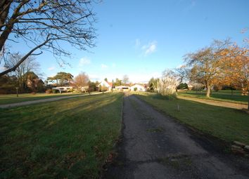 Thumbnail 3 bed bungalow to rent in Bucklesham Road, Ipswich