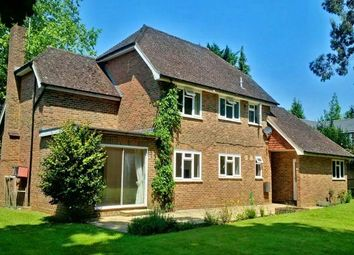 Thumbnail 4 bed property to rent in Ashcroft Park, Cobham