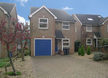 Thumbnail 4 bed property to rent in Acorn Ridge, Matlock, Derbyshire
