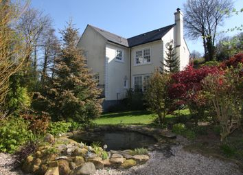 Thumbnail 4 bed country house for sale in Chillaton, West Devon