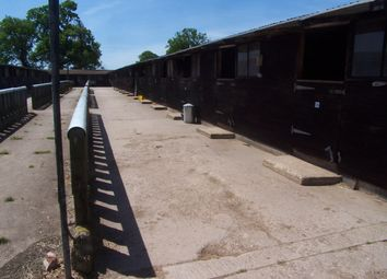 Thumbnail 1 bed equestrian property to rent in Upton, Oxfordshire
