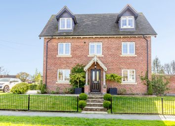 Thumbnail 6 bed detached house for sale in Askew Grove, Derby, Derbyshire