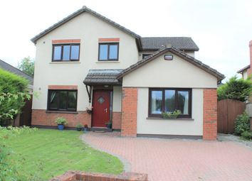 Thumbnail 4 bed detached house for sale in 19 Treacy Meadows, Newbridge, Kildare