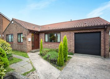 Thumbnail 2 bed bungalow to rent in Hill Drive, Ackworth, Pontefract