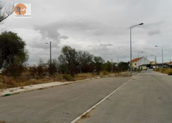 Thumbnail Land for sale in Montijo E Afonsoeiro, Montijo E Afonsoeiro, Montijo