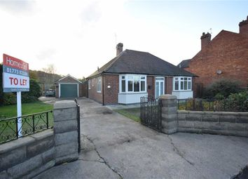 Thumbnail 3 bed detached bungalow to rent in Kilbourne Road, Belper