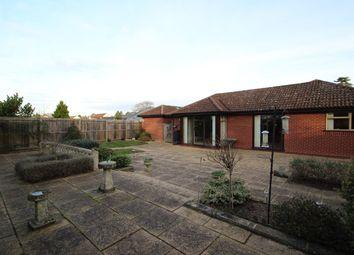 Thumbnail 4 bedroom detached bungalow for sale in Bucklesham Road, Ipswich