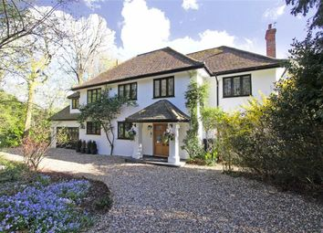 Thumbnail 5 bedroom detached house for sale in Firs Walk, Tewin Wood, Hertfordshire