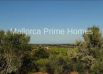 Thumbnail Land for sale in 07638, Colonia San Jordi, Spain