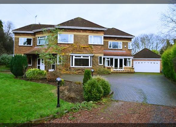 Thumbnail 5 bedroom detached house for sale in Old Annandale Road, Kirkella, West Hull Villages