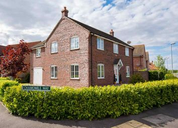 Thumbnail 4 bed detached house for sale in Chamomile Way, Spalding