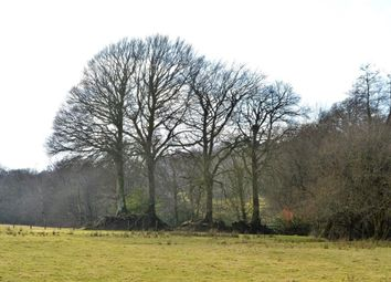 Thumbnail Land for sale in Land At Four Beeches Farm, Lake, Sourton, Devon