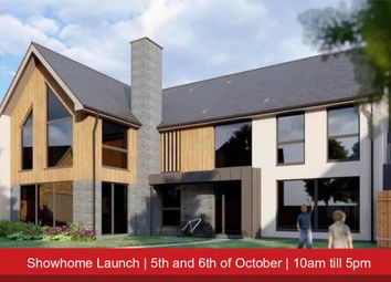 Thumbnail 4 bed detached house for sale in London Road, Hampton Vale, Peterborough