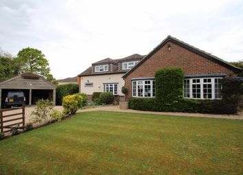 Thumbnail 4 bedroom detached house for sale in The Avenue, Mortimer Common