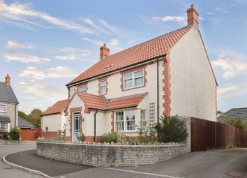 Thumbnail 5 bed detached house for sale in Partridge Close, Greinton, Bridgwater