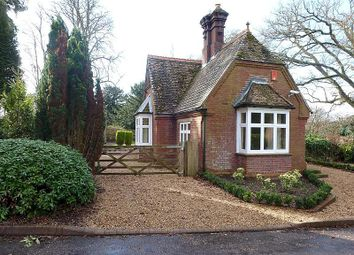 Thumbnail 2 bedroom detached house to rent in Enton, Godalming