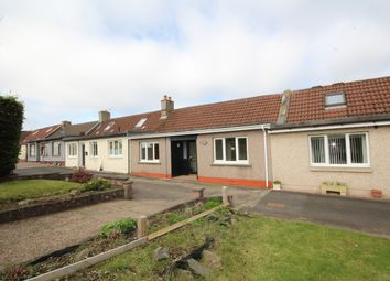 Thumbnail 2 bed terraced bungalow for sale in Quality Street, Gauldry, Fife