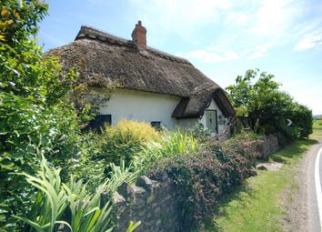 Thumbnail 2 bed detached house for sale in Musbury, Axminster