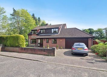 Thumbnail 4 bed detached house for sale in Brickfields, Strumpshaw, Norwich