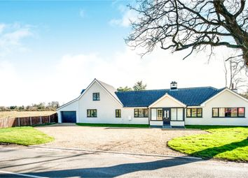 Thumbnail 5 bed detached bungalow for sale in Hopton Road, Garboldisham, Diss