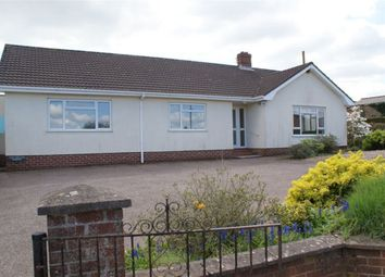Thumbnail 3 bed bungalow to rent in Plymtree, Cullompton