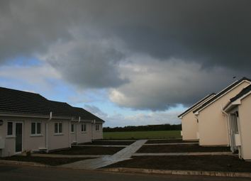 Thumbnail 2 bed terraced bungalow for sale in St. Merryn, Padstow