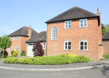 Thumbnail 2 bed detached house to rent in Dennes Mill Close, Wye, Ashford