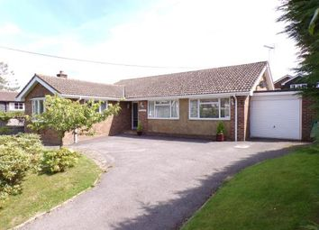 Thumbnail 3 bed bungalow for sale in School Lane, Washington, Pulborough, West Sussex