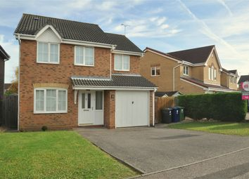 Thumbnail 4 bedroom detached house to rent in Stickle Close, Huntingdon, Stukeley Meadows, Cambridgeshire