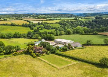 Thumbnail 4 bed equestrian property for sale in Branscombe, Seaton, Devon