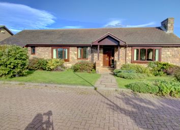 Thumbnail 4 bed cottage for sale in Meadow Lane, Beadnell, Chathill