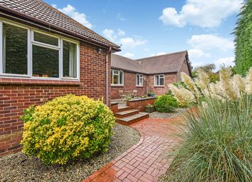 Thumbnail 4 bed detached bungalow for sale in Anstey Road, Alton, Hampshire