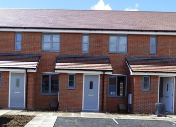 Thumbnail 2 bed terraced house to rent in Anstee Road, Shaftesbury