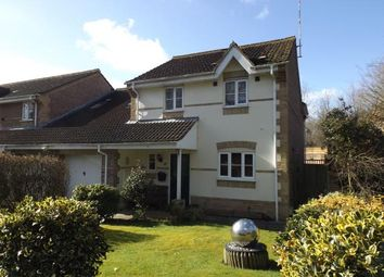Thumbnail 4 bed link-detached house for sale in Chandler's Ford, Eastleigh, Hampshire