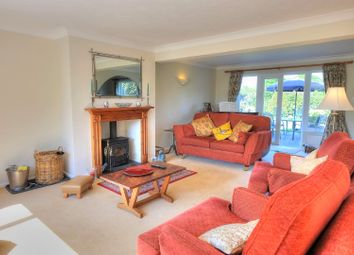 Thumbnail 4 bedroom detached house for sale in Rectory Road, Haddiscoe, Norwich