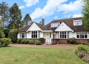 Thumbnail 4 bed detached bungalow for sale in Hemel Hempstead, Hertfordshire