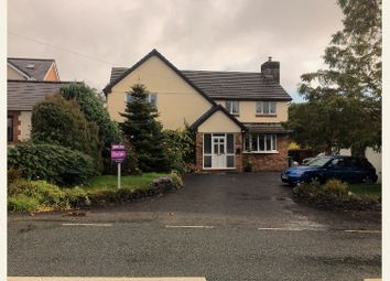 Thumbnail 4 bed detached house for sale in Heol Y Foel, Foelgastell