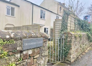 Thumbnail 3 bed terraced house for sale in Victoria Road, Barnstaple
