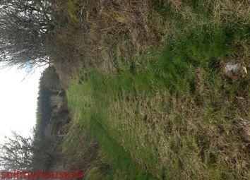 Thumbnail Land for sale in Oightherry, Rylane, Macroom, Co. Cork