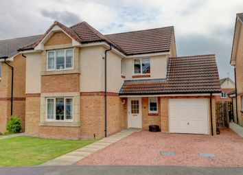 Thumbnail 4 bed detached house for sale in Tipperwuppy Court, Dumfries