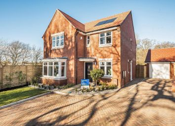 Old Broyle Road, Chichester PO19. 4 bed detached house for sale