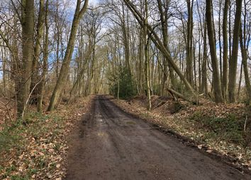 Land for sale in Coombes Lane, Arborfield, Wokingham, Berkshire RG41