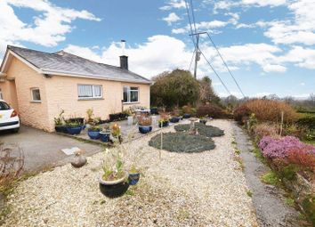 Thumbnail 2 bed bungalow to rent in Coxpark, Gunnislake